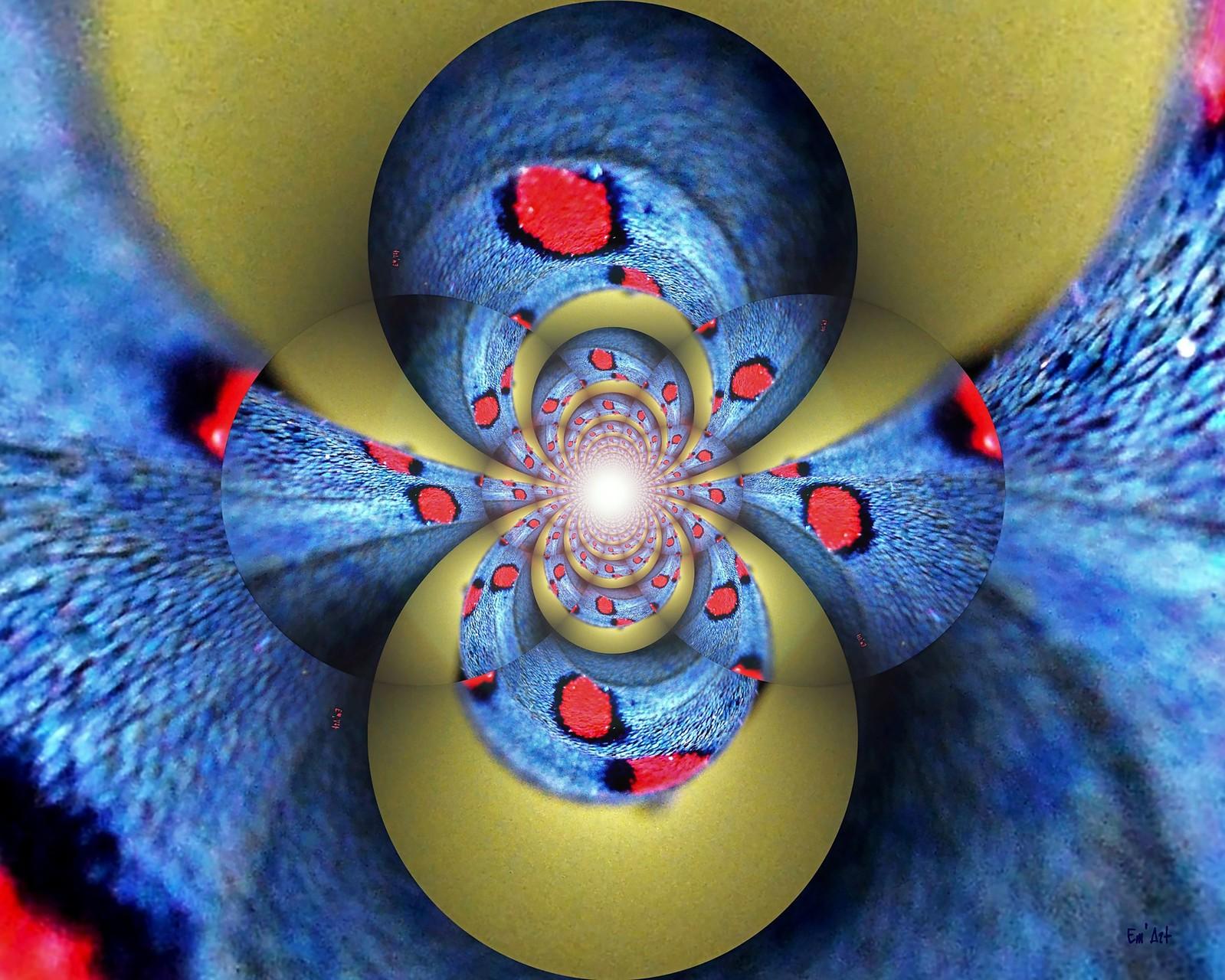 Y Multiverse