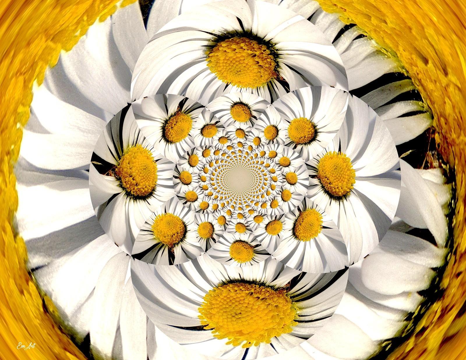 Tourne-Fleur
