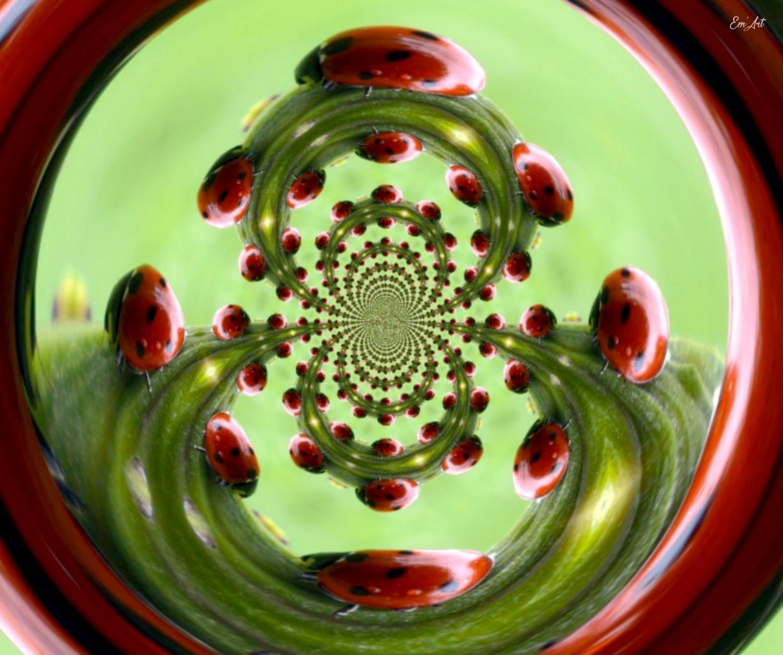 En rouge et noir I - photographie d'art 40 x 50 cm