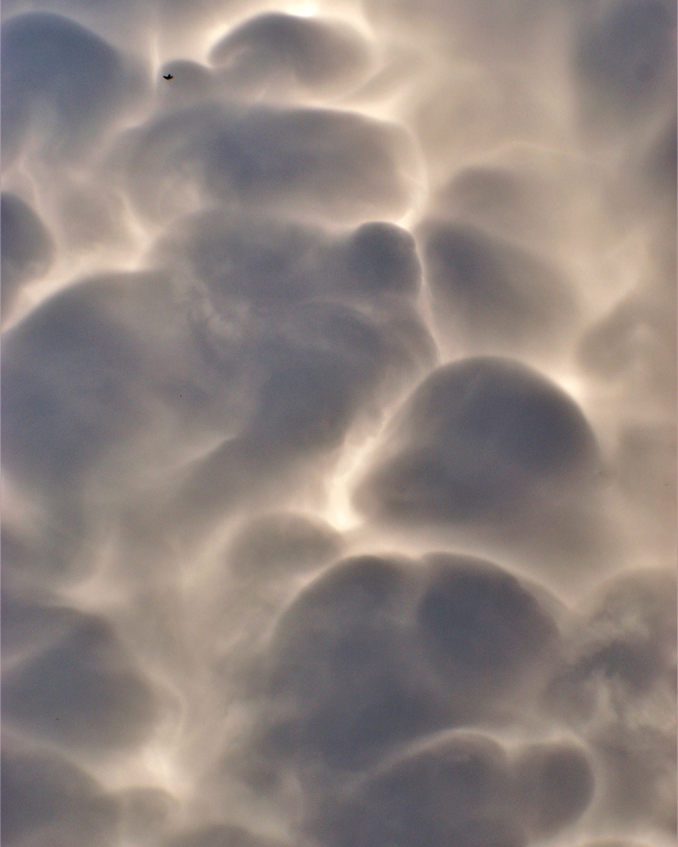 Mammatus III, Photography by Em'Art