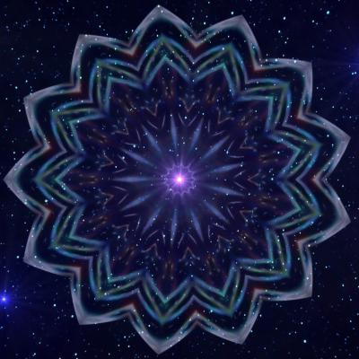 Fleur stellaire 30 x 45 cm 8mo