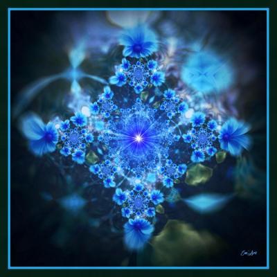 Tourne solaire iii 30 x 30 cm bleuet solaire 8mo